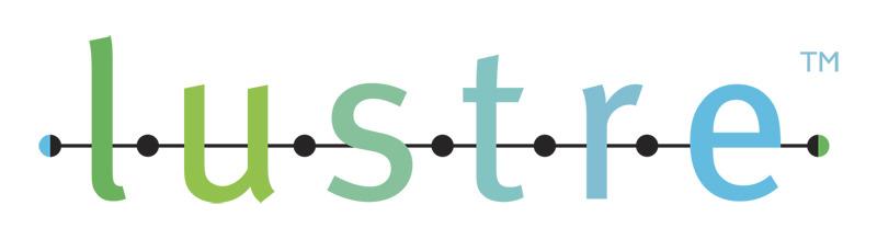 研究單位 Lustre DFS (分散式檔案系統)大數據180TB資料救援